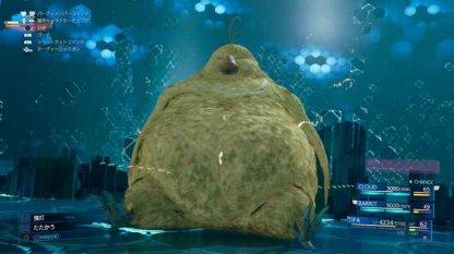 Fat Chocobo