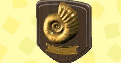 Fossil Plaque