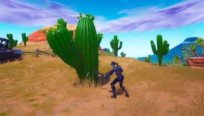 Keep Your Guard Up while Farming Cactus