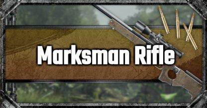 PUBG Mobile | Marksman Rifle List & Stats Comparison