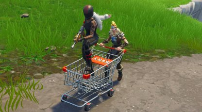 Shopping Cart Combat with a Passenger