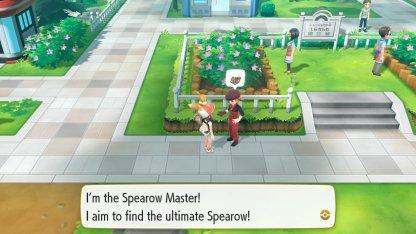 Spearow Master Trainer