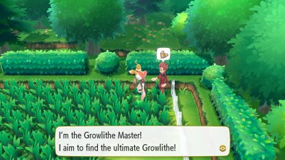 Growlithe Master Trainer