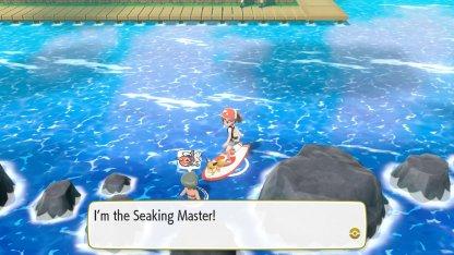 Seaking Master Trainer