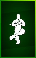 SHAOLIN SIT-UP Icon
