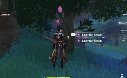 Lavender Melon
