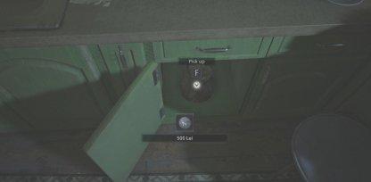 500 Lei Found In Garage Cupboard