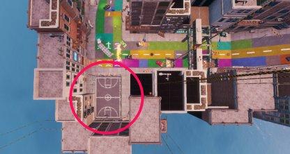 Basketball Court Bird