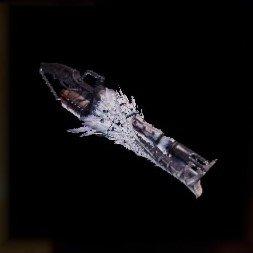 Best endgame Heavy Bowgun 3rd - Fulguration