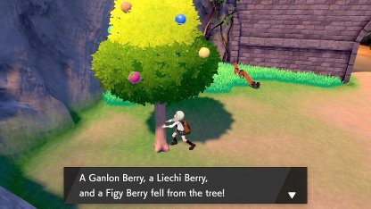 Figy Berry Route 7