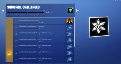 Snowfall Challenges