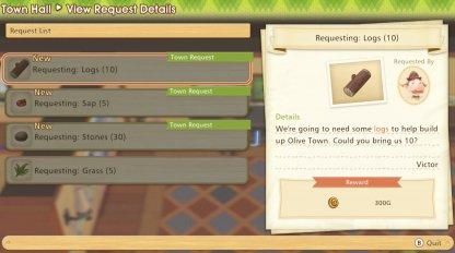 Town Level quest