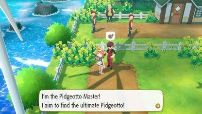 Pidgeotto Master Trainer