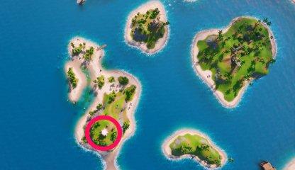 Coral Cove Location Bird